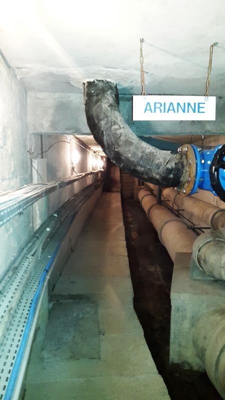 Ariane - Photo 1